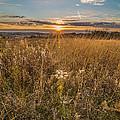 Retzer Autumn Sunset by Andrew Slater