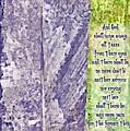 Revelation 21 4 by Michelle Greene Wheeler