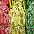 Revolutionary Tigre Ital by King Mezidor