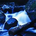 Rhapsody In Blue by Rodney Lee Williams