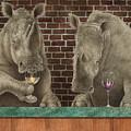 Rhine Tasting... by Will Bullas