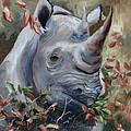Rhino by Brenda Thour