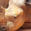 Rhino Naptime by Virginia Kay White