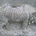 Rhino Relief - Church Door Detail Pisa by Christiane Schulze Art And Photography