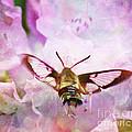 Rhododendron Dreams by Kerri Farley