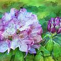 Rhododendrum by Joyce Baldassarre