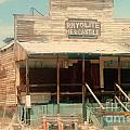Rhyolite Mercantile by Lisa Byrne