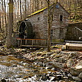 Rice Grist Mill And Threshing Barn  by Sunny Phillips
