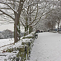 Richmond Hill Snow by Maj Seda