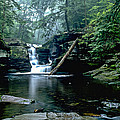 Ricketts Glen Falls 016 by Scott McAllister