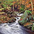 Ricketts Glen Falls by Marcia Colelli