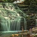 Ricketts Glen Shawnee Waterfall by Adam Jewell