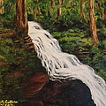 Ricketts Glen Waterfall by Christy Collins