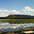 Riddle Lake by Jeff Swan