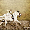 Ride Like The Wind by Cindy Singleton