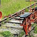 Ride The Rail by Brigitte Mueller