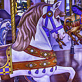Ride The White Horse by Garry Gay