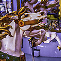Ride The Wild Carrousel Horses by Garry Gay