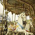 Ride The Wild Pony by Judy Hall-Folde