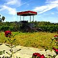 Rideau Vineyards Solvang California by Kurt Van Wagner