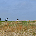 Ridgeline With Stonewall Jackson At Manassas National Battlefield Park by Bruce Gourley