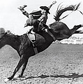 Riding A Bucking Bronco by Underwood Archives