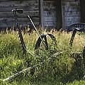 Riding Mower by Guy Shultz