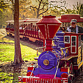 Riding Out Of The Sunset On The Hermann Park Train by David Morefield