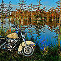 Riding The Mississippi Delta by Eric Albright