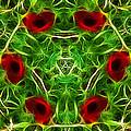 Ring Of Poppies by Lynn Bolt