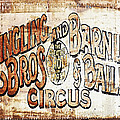 Ringling Brothers And Barnum And Bailey Circus by Skip Nall