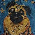 Ringodog by Jason Ice