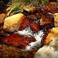 Rio En Medio Boulder Falls by Aaron Burrows