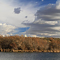 Riparian Zone Snake River by Ed  Riche