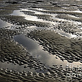 Rippled Sand by John Shaw