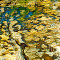 Ripples In Time by Artist and Photographer Laura Wrede