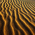 Ripples Oregon Dunes National Recreation Area by Dave Welling