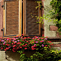 Riquewihr Window by Brian Jannsen