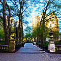 Rittenhouse Square Park by Bill Cannon