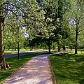 Ritter Park Paths by Christy Saunders Church