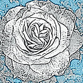 Ritzy Rose With Ink And Blue Background by Conni Schaftenaar