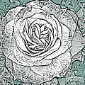 Ritzy Rose With Ink And Green Background by Conni Schaftenaar