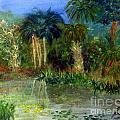 River At Riverbend Park In Jupiter Florida by Donna Walsh