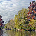 River Avon In Autumn by Tony Murtagh