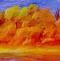 River Bottoms In Autumn by Steve Jorde