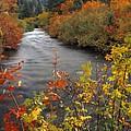 River Color by Leland D Howard