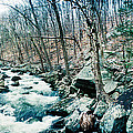 River Flowing Through A Valley, Hudson by Panoramic Images