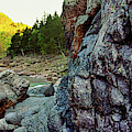 River Flowing Through Rocks, Black by Panoramic Images