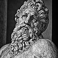 River God Arno by David Pringle