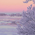 River In Winter by Conny Sjostrom